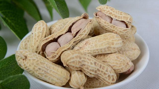 孕妇怀孕期间能吃花生,落花生,番豆,长生果,落地松,地果,番果,地豆吗?