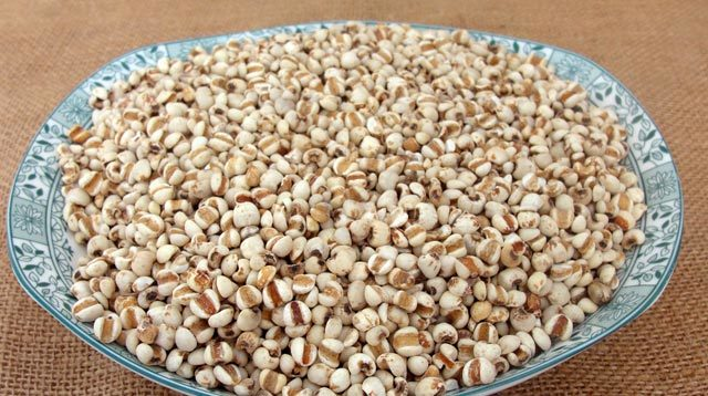 薏苡仁,苡米,土玉米,薏仁,起实,薏珠子 孕妇不能吃的食物