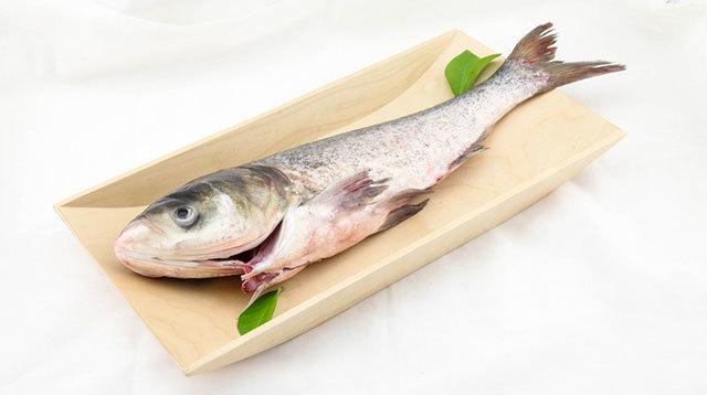 孕妇怀孕期间能吃花鲢鱼, 鳙鱼,胖头鱼,包头鱼,大头鱼,黑鲢吗