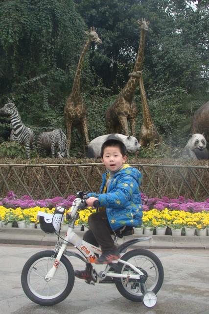 学会骑自行车,就一瞬间的事儿图片